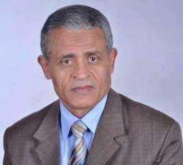 الدكتور عبدالمحسن جودة مديرا لبرنامج الماجستير المهنى فى إدارة الأعمال بجامعة المنصورة